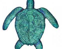 Fusion Loggerhead Turtle Caribbean
