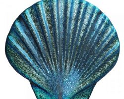 Seashell Caribbean